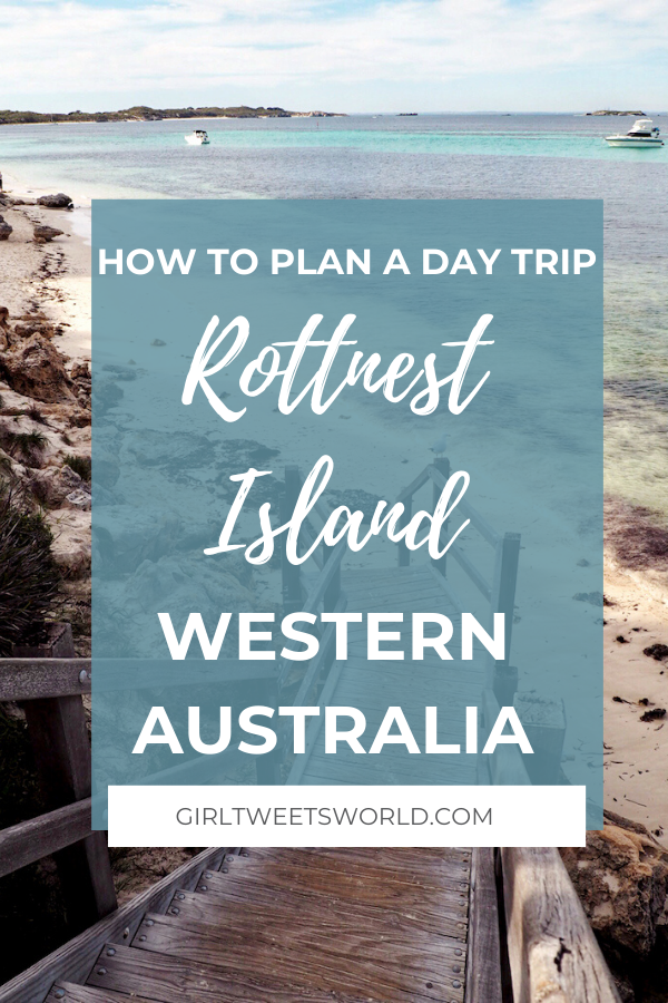 How to plan a day trip to Rottnest Island Western Australia