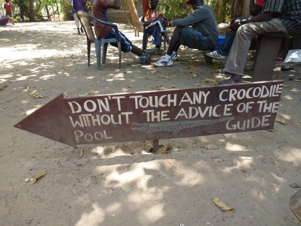 Kachikally Crocodile Pool The Gambia