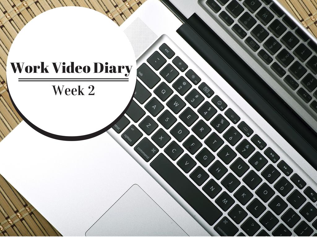 Work Video Diary Week 2