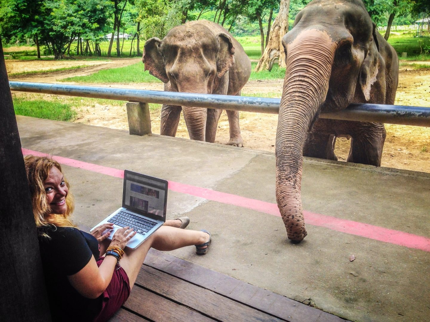 From Where I Work: Diana Edelman at Elephant Nature Park, Thailand