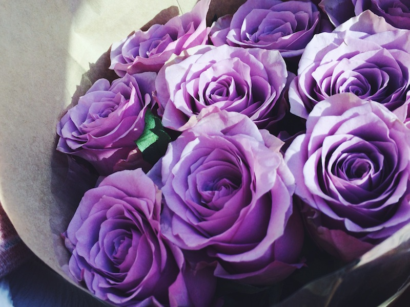 Roses from Bondi Markets