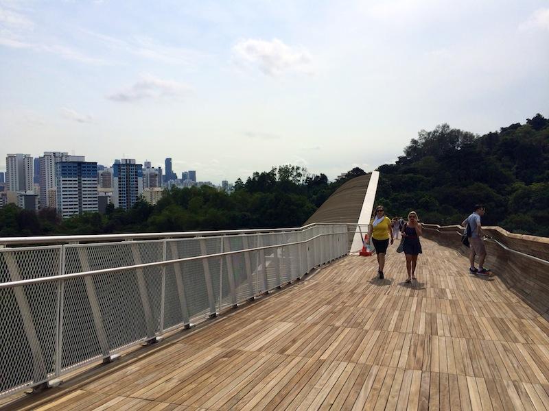 Crossing Henderson Waves - Singapore's highest pedestrian bridge