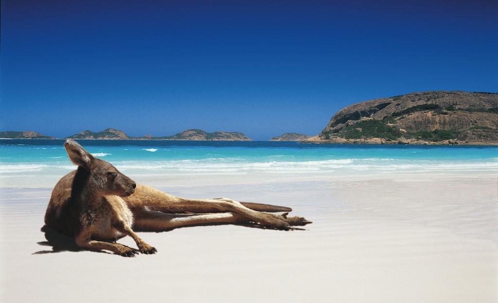 Lucky Bay - image by visitesperance.com
