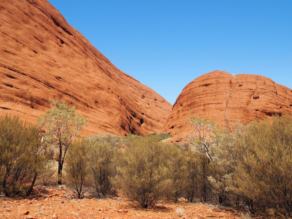 Studying the rocks on Valley of the Winds walk at Kata Tjuta