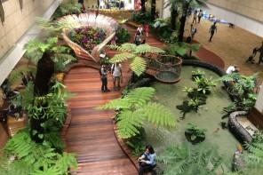 Singapore Changi Transit Hotel Review