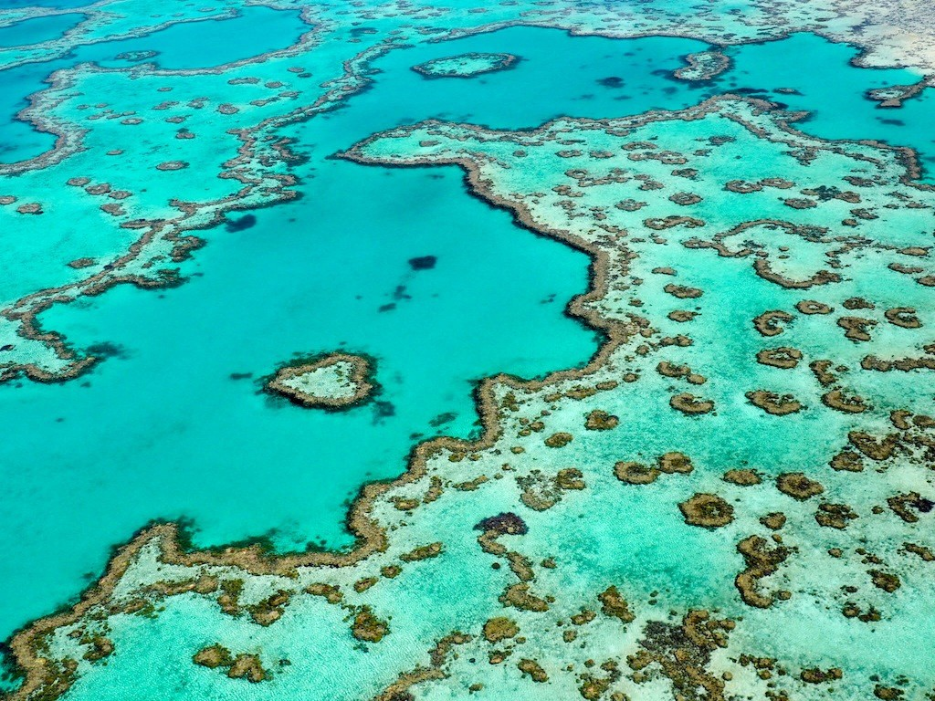Heart Reef - the most photographed & famous section of the Great Barrier Reef is a short distance from Reef World.
