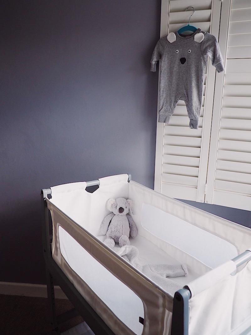 Pregnancy Diary Second Trimester