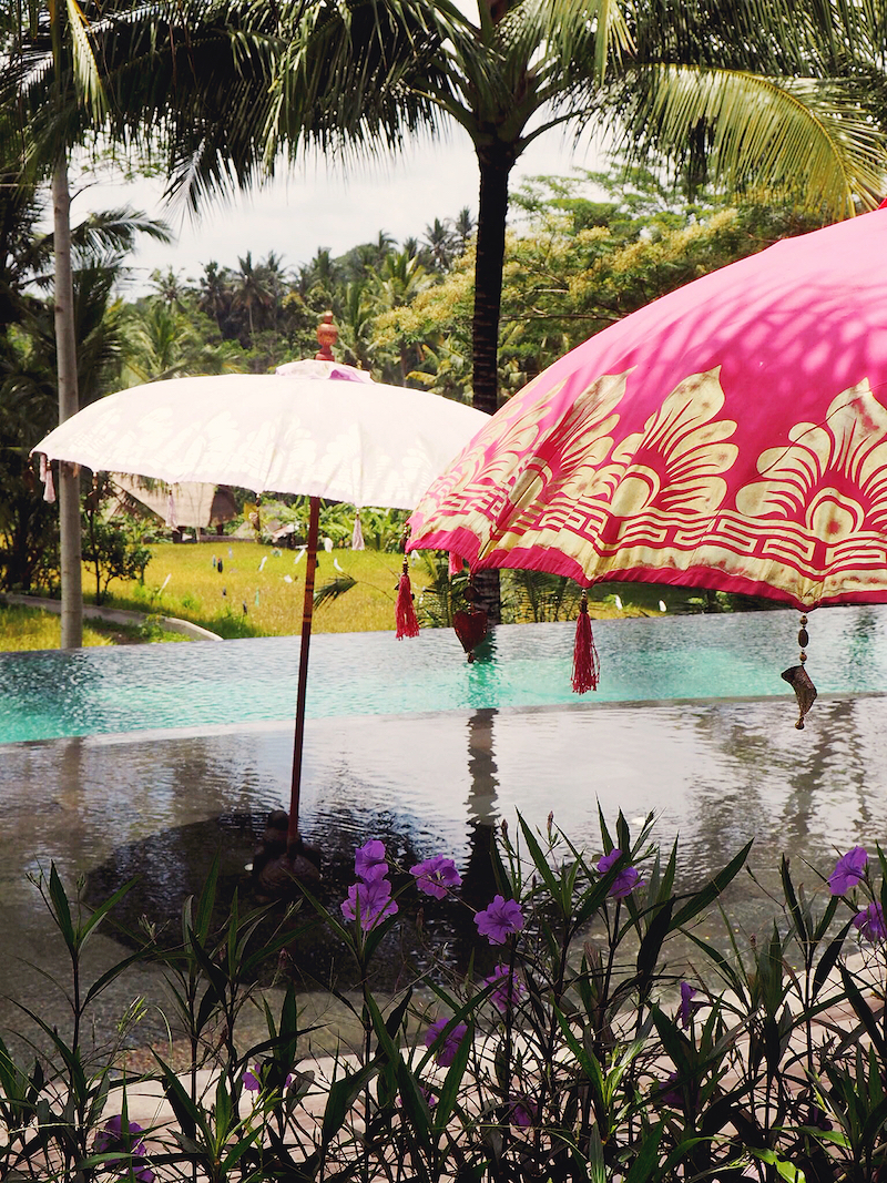 Lazy days by the pool at Blue Karma Ubud