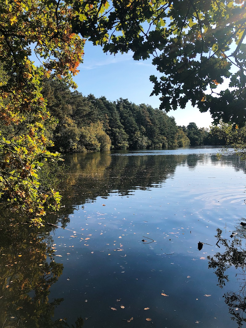 Heath Lake Wokingham