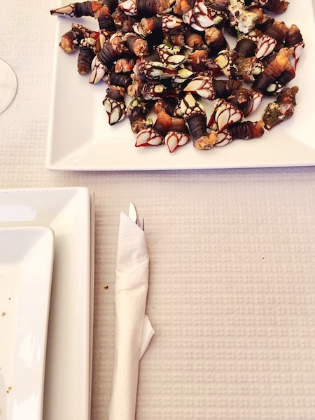 Percebes are best served with a glass of the region's fantastic Albarino wine