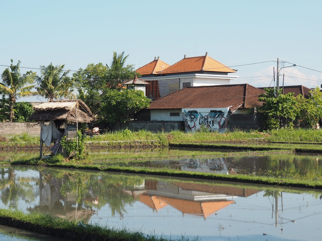 Things To Do In Canggu: Travel Guide To Canggu, Bali - Girl Tweets World