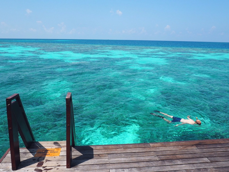 Snorkelling at Coco Bodu Hithi