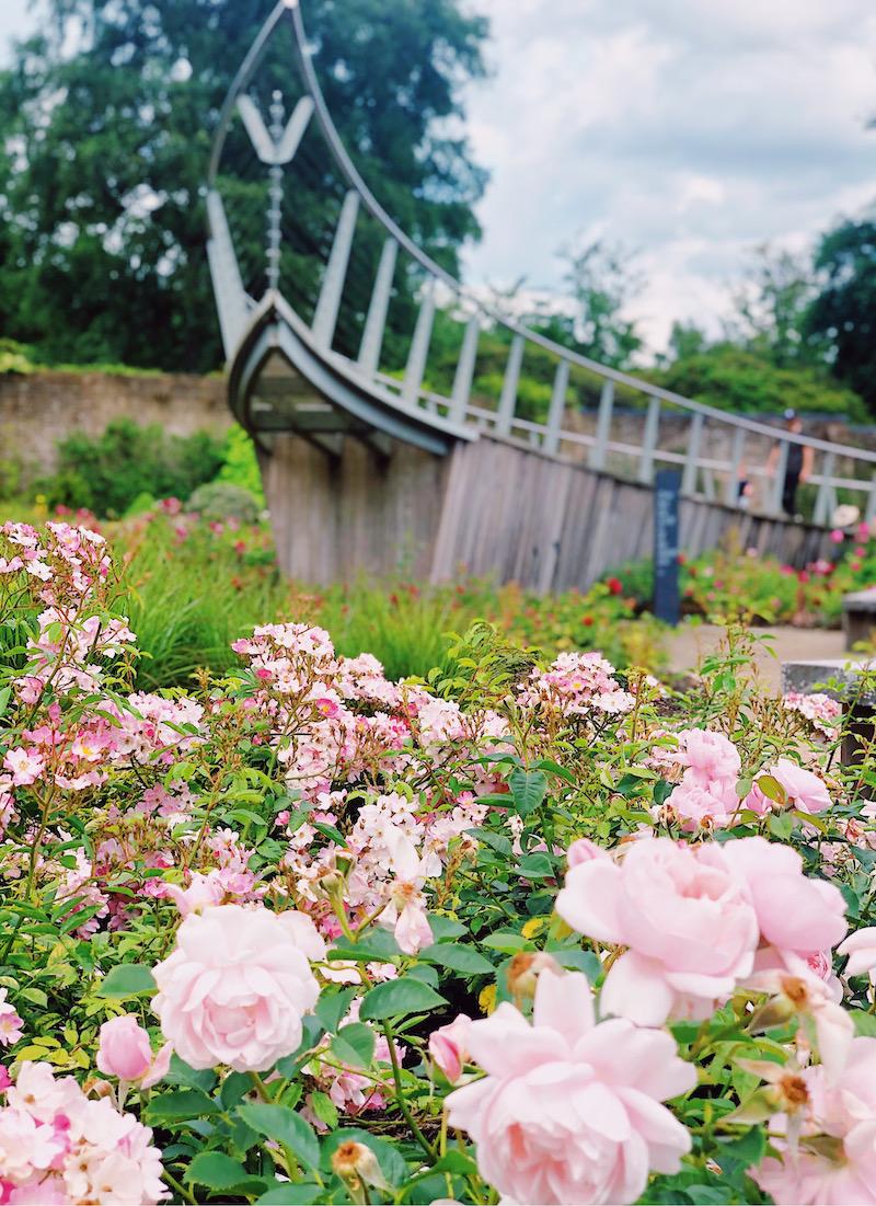 Savill Garden Windsor Great Park