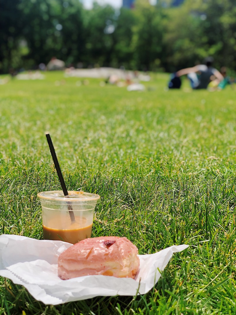 Doughnut in Central Park NYC