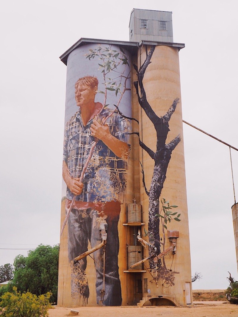 Patchewollock Silo by Fintan Magee - Silo Art Trail