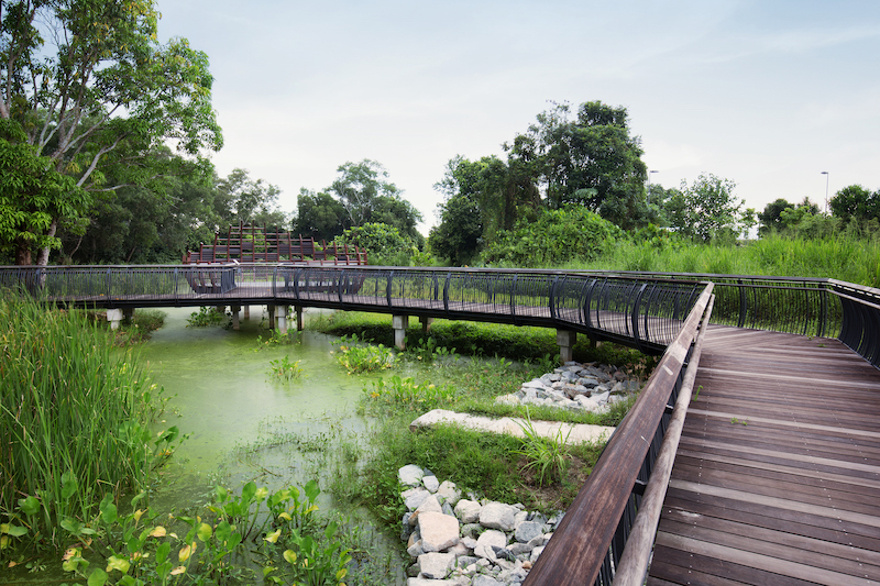 Sungei Buloh Wetland Reserve Photo by Marklin Ang
