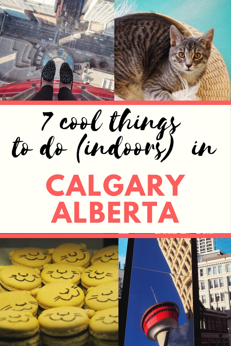 cool things to do indoors in Calgary Alberta