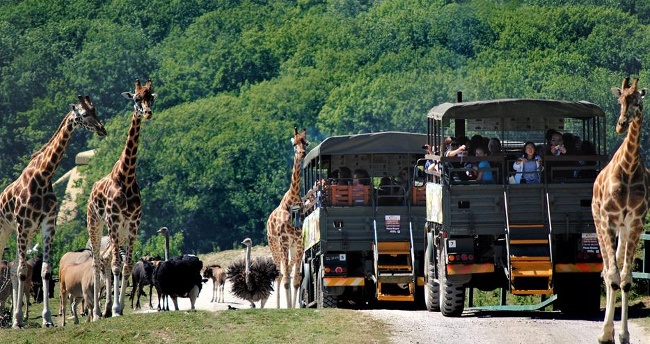 Port Lympne Hotel and Reserve - Best UK breaks for young families